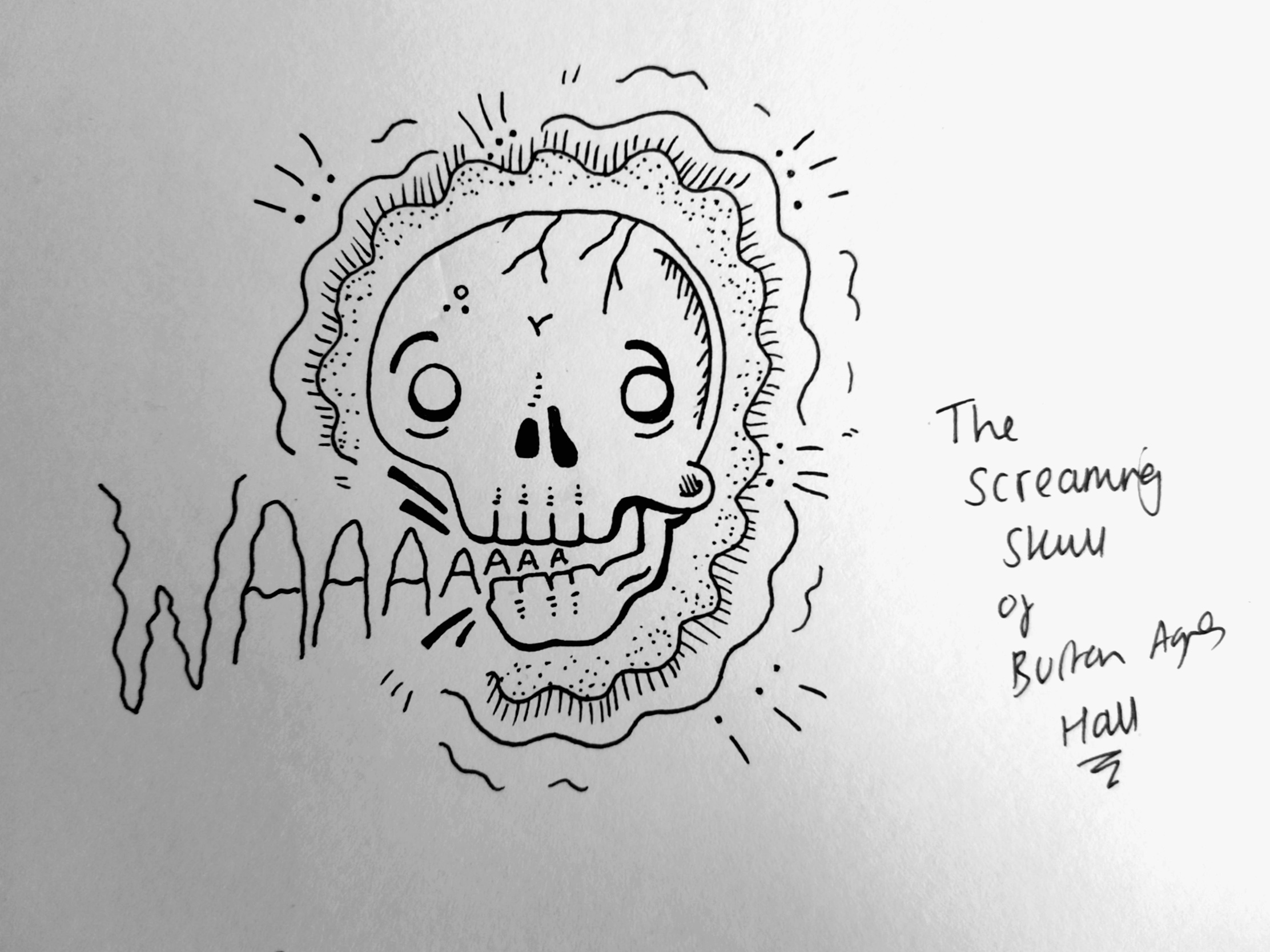 Illustrated Ghost Stories 2. The Screaming Skull of Burton Agnes Hall